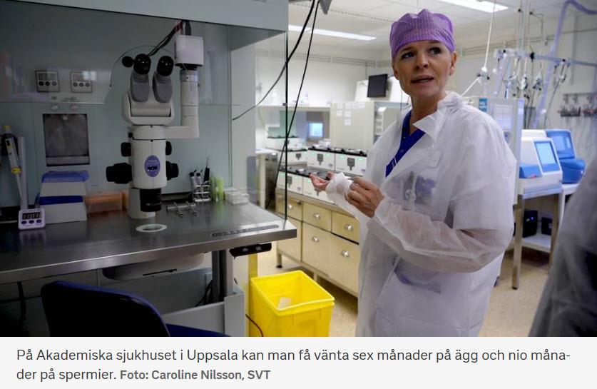 Köerna till ägg- och spermiedonation är redan årslånga på många håll - Nordic Surrogacy